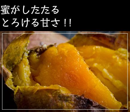 甘い安納芋